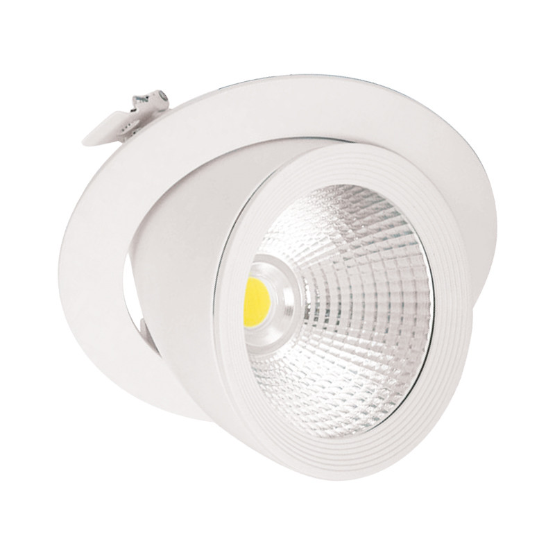 Inclinable Led Avec Alimentation Orientable Et Spot Rond Escargot ED2IH9