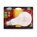 Ampoule LED B22 Bulb Filament Dépoli 10W 2700°K