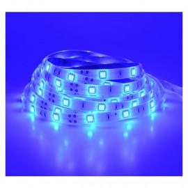 Bandeau LED BLEU 5 m 30 LED/m 36W IP65 - 24V