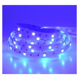 Bandeau LED BLEU 5 m 30 LED/m 36W IP20 - 24V