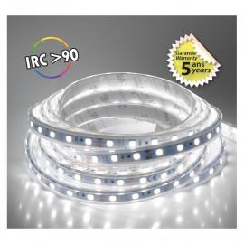 Bandeau LED 6000°K 5 m 60 LED/m 62W IP67  - 24V - GARANTIE 5 ANS