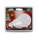 Ampoule LED E27 Bulb 6W 6000K